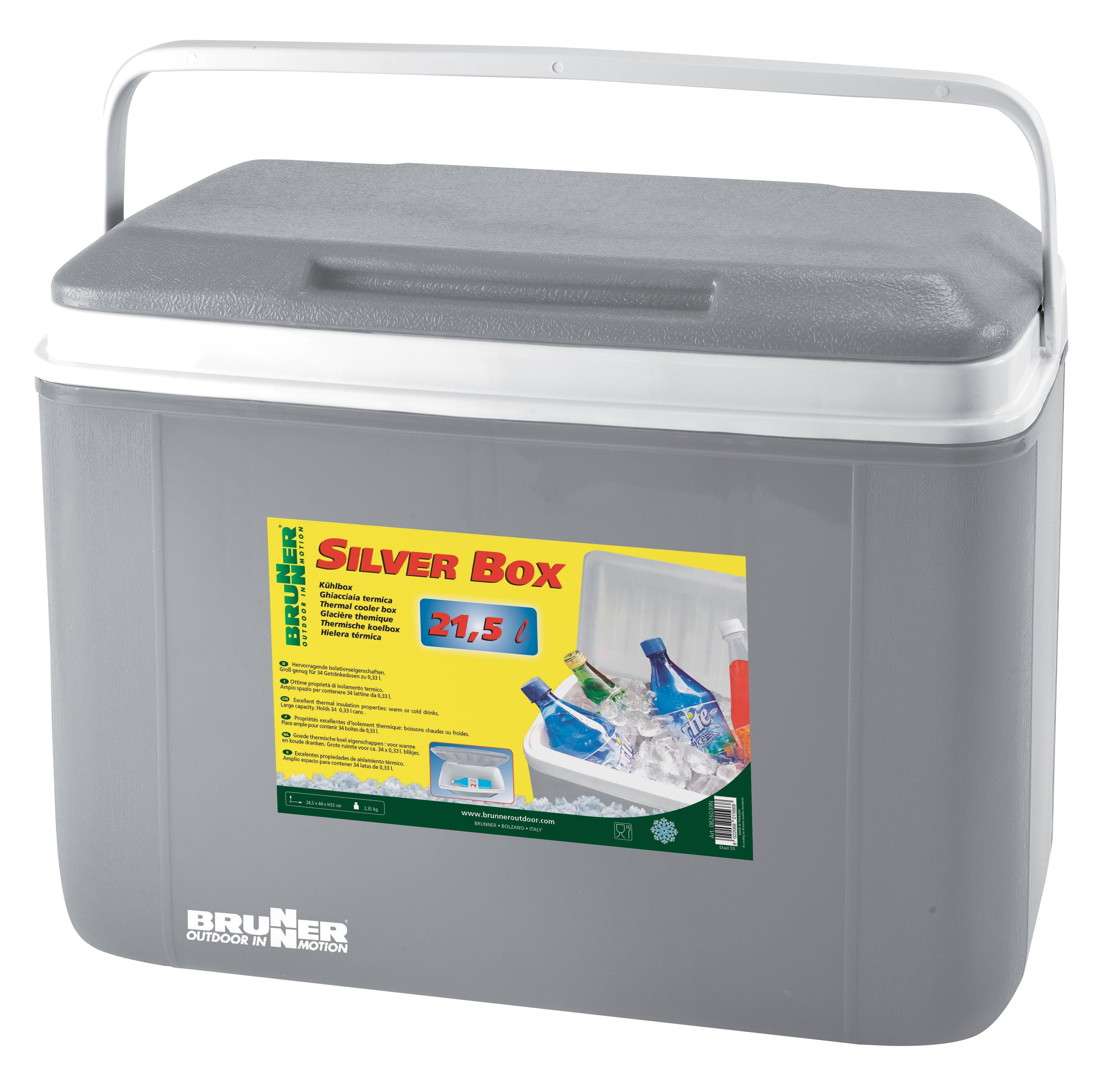 Ghiacciaia Silver Box 21