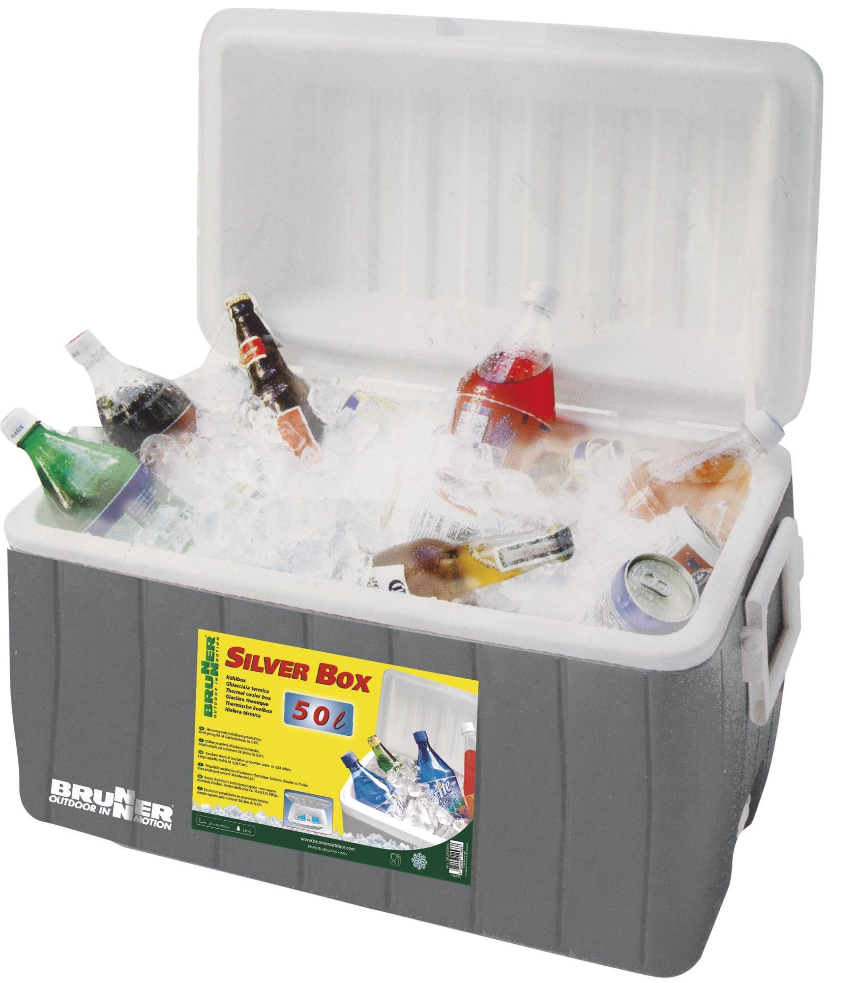 Ghiacciaia Silver Box 50